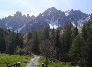 21 Luglio 2019 – Val di Scalve, Schilpario (BS)